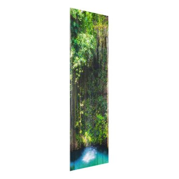 Quadro in vetro - Hanging roots of Ik-Kil Cenote - Pannello