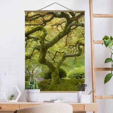 Foto su tessuto da parete con bastone - Verde Giardino Giapponese - Verticale 4:3
