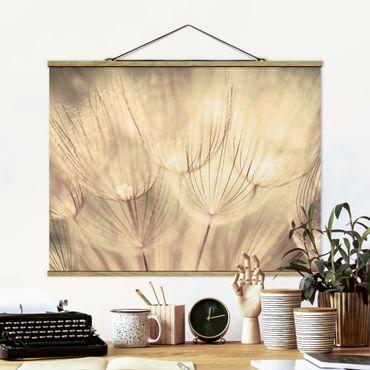 Foto su tessuto da parete con bastone - Dandelions close-up in tonalità seppia casalinga - Orizzontale 3:4