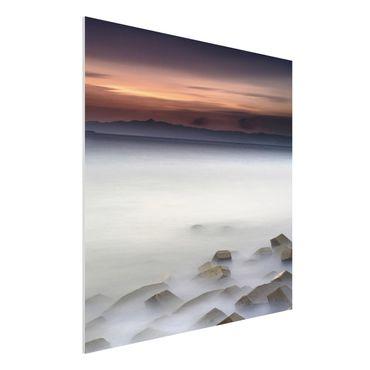 Quadro in forex - Tramonto Nella Nebbia - Quadrato 1:1
