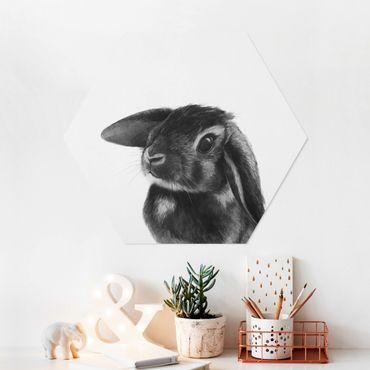 Esagono in forex - Illustrazione Coniglio bianco e nero Disegno