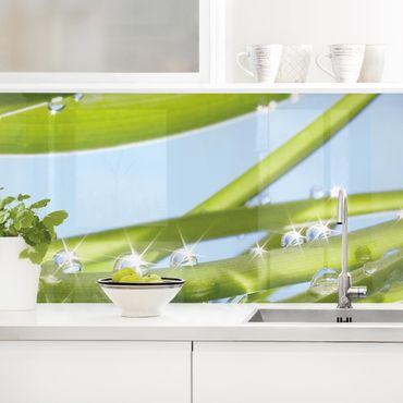 Rivestimento cucina - Verde Fresco