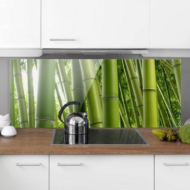 Paraschizzi in vetro - Bamboo Trees