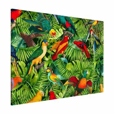 Lavagna magnetica - Colorato collage - Parrot In The Jungle - Formato orizzontale 3:4