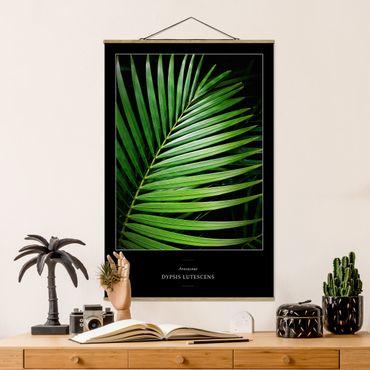 Foto su tessuto da parete con bastone - Tropical Palm Leaf - Verticale 3:2