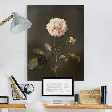 Quadri su tela - Barbara Regina Dietzsch - Rosa Gallica Con Bumblebee