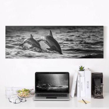 Stampa su tela - Due delfini che saltano - Panoramico