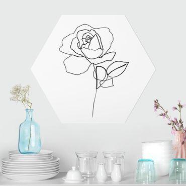 Esagono in forex - Line Art Rosa Nero Bianco