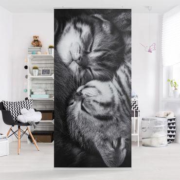 Tenda a pannello - Two Kittens - 250x120cm