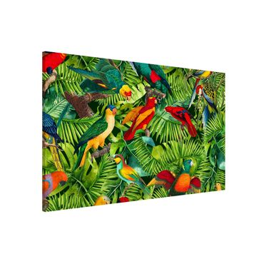 Lavagna magnetica - Colorato collage - Parrot In The Jungle - Formato orizzontale 3:2