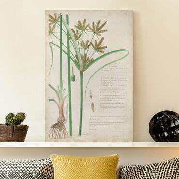 Stampa su tela - Vintage Botanica Disegno Erbe I - Verticale 3:2