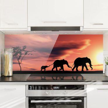 Paraschizzi in vetro - Savannah Elephant Family