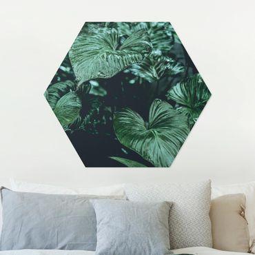 Esagono in Alu-dibond - Piante Tropicali I
