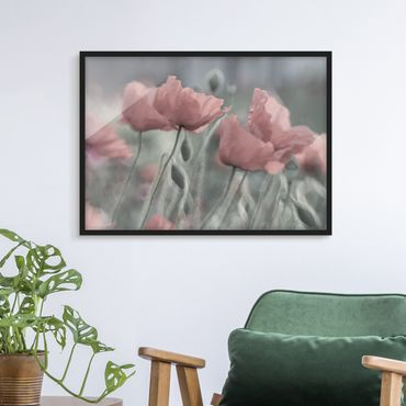 Poster con cornice - Picturesque Poppies - Orizzontale 3:4