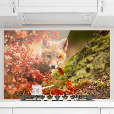 Paraschizzi in vetro - Fox In Autumn