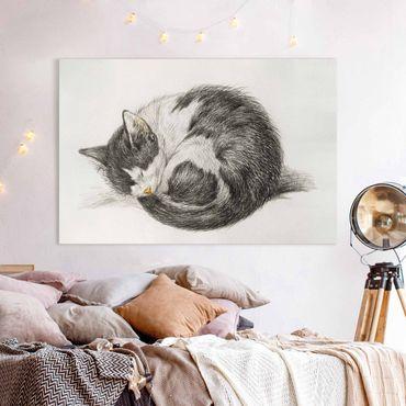 Stampa su tela - Vintage Disegno Cat II - Orizzontale 2:3