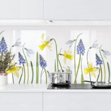 Rivestimento cucina - Fiori di primavera II