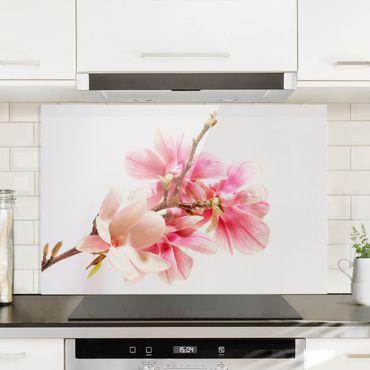Paraschizzi in vetro - Magnolia Blossoms - Orizzontale 2:3