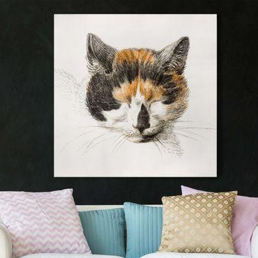 Stampa su tela - Vintage Disegno Cat IV - Quadrato 1:1