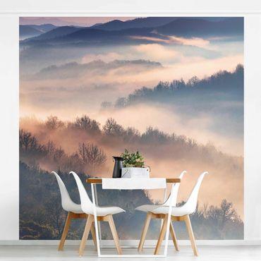 Carta da parati paesaggio - Nebbia al tramonto