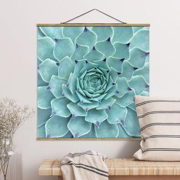 Foto su tessuto da parete con bastone - Cactus Agave - Quadrato 1:1
