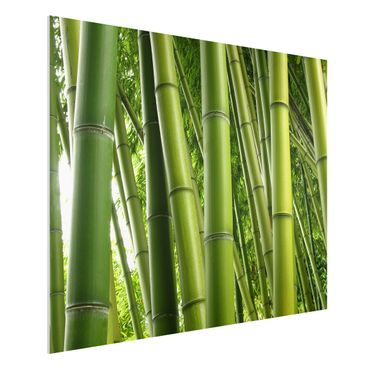 Quadro in forex - Bamboo Trees No.1 - Orizzontale 4:3