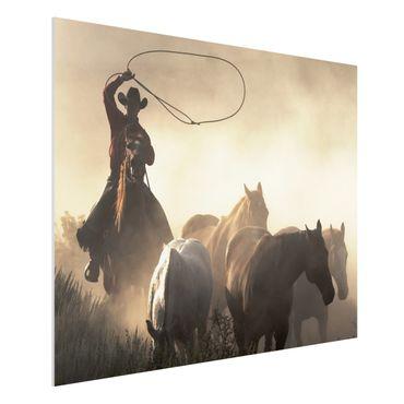 Quadro in forex - Cowboys - Orizzontale 4:3