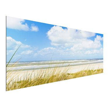 Quadro in alluminio - On the North Sea coast