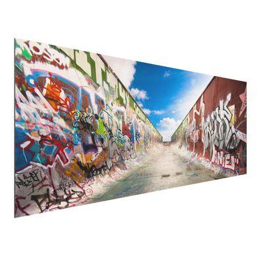 Quadro in alluminio - Skate Graffiti