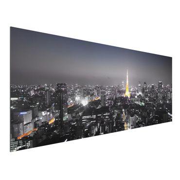 Quadro in alluminio - Tokyo