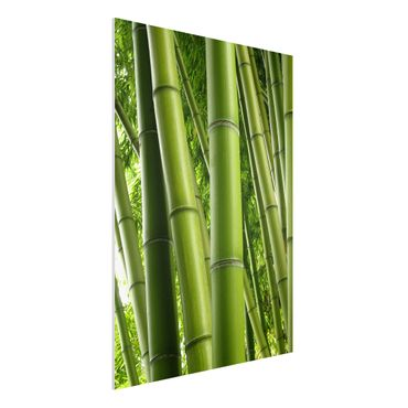 Quadro in forex - Bamboo Trees No.1 - Verticale 3:4