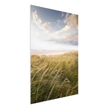 Quadro in forex - Dunes dream - Verticale 3:4