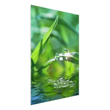 Quadro in forex - Green Ambiance II - Verticale 3:4