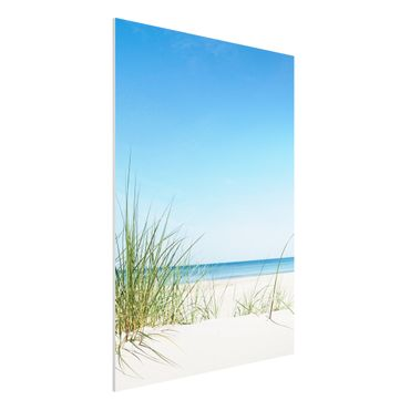 Quadro in forex - Baltic coast - Verticale 3:4