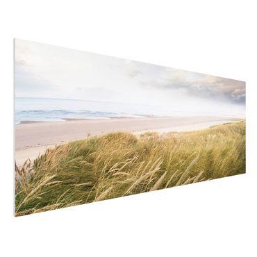 Quadro in forex - Dunes dream - Panoramico