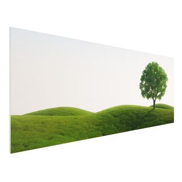 Quadro in forex - Green peace - Panoramico