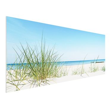 Quadro in forex - Baltic coast - Panoramico