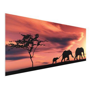 Quadro in forex - Savannah Elefant Family - Panoramico