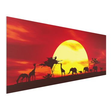 Quadro in forex - Sunset Caravan - Panoramico