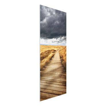 Quadro in forex - Pathway Through The Dunes - Pannnello