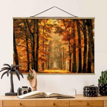 Foto su tessuto da parete con bastone - Enchanted Forest In autunno - Orizzontale 2:3