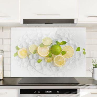 Paraschizzi in vetro - Citrus Fruits On Ice