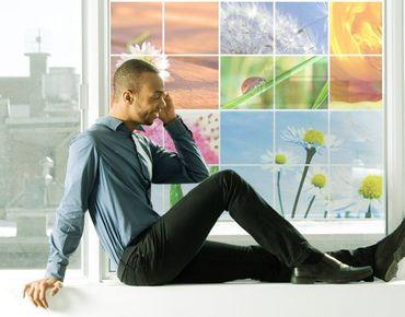 Decorazione per finestre Spring Impressions