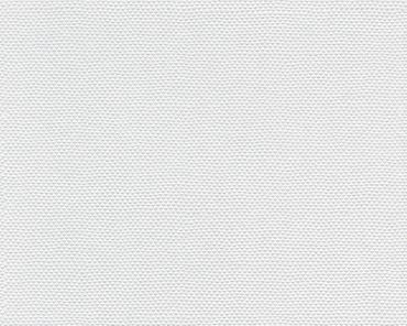 Carta da parati - A.S. Création Meistervlies 2020 in Bianco verniciabile