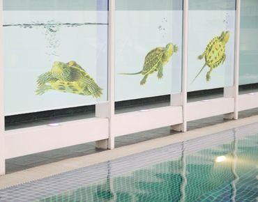 Decorazione per finestre Turtle Trio