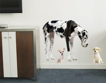 Adesivo murale no.87 Dog Meeting