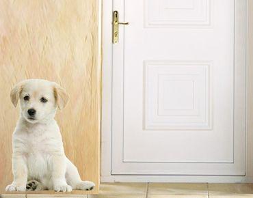 Adesivo murale no.93 Sweet White Dog