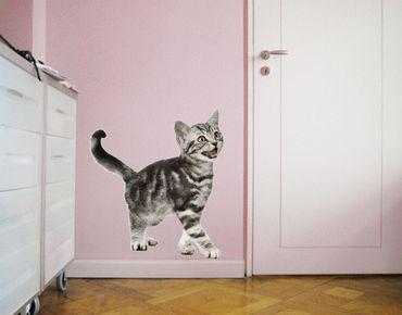 Adesivo murale no.132 Kitty