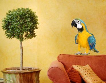 Adesivo murale no.134 Macaw