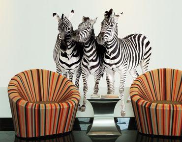 Adesivo murale no.142 Zebras